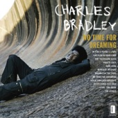Charles Bradley (feat. Menahan Street Band) - Heartaches and Pain
