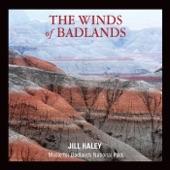Jill Haley - Moon over Badlands