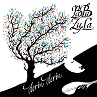 BaBa ZuLa - Derin Derin artwork