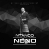 Ntando - Nono artwork