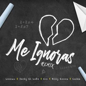 Me Ignoras Remix (feat. Eix & Calka) - Single Mp3 Download