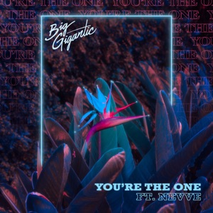 You're the One (feat. Nevve) - Single Mp3 Download