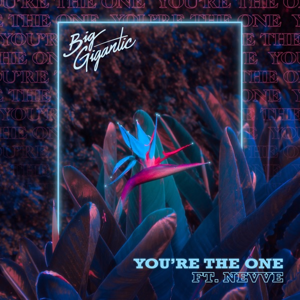 You're the One (feat. Nevve) - Single