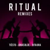 Tiësto - Ritual - Benny Benassi & BB Team Remix
