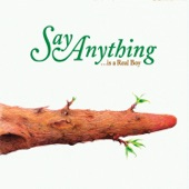 Say Anything - Slowly, Through a Vector