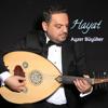 Ayzer Büyüker - Bir Güzel Ahu Gördüm artwork