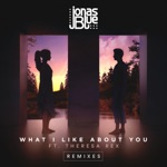 What I Like About You (feat. Theresa Rex) [Remixes] - EP