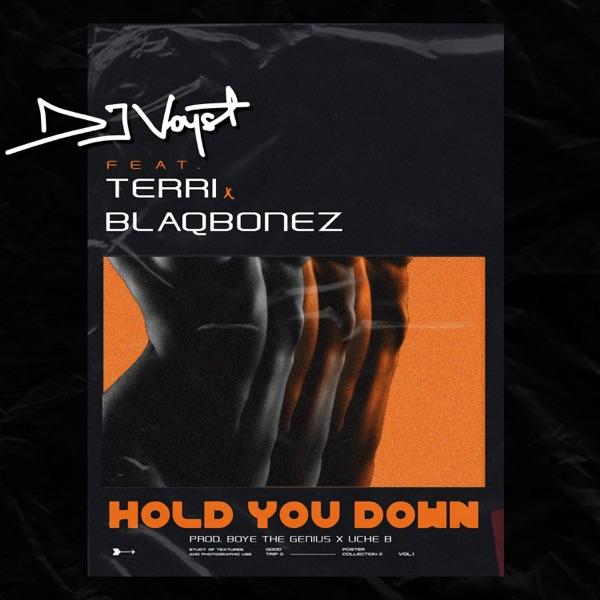 Hold You Down (feat. Terri & Blaqbonez) - Single