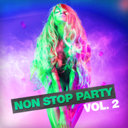 Non Stop Party, Vol. 2 - Various Artists - Various Artists
