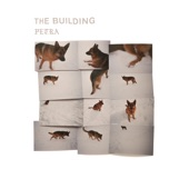 The Building - When I Think of You