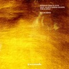 Fire Gold feat Allé Damon Sharpe Fatum Remix Single