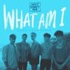 What Am I (Cash Cash Remix) - Single