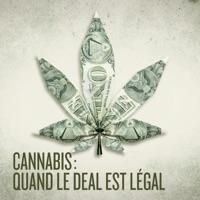 Télécharger Cannabis : quand le deal est légal Episode 1