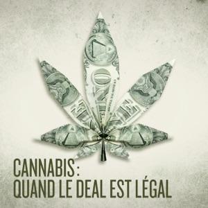 Cannabis : quand le deal est légal - Episode 1