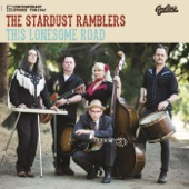 The Stardust Ramblers - Barely Any Memory