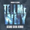 Tell Me Why (Keanu Silva Remix) - Single