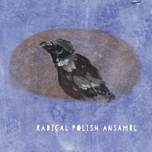 Radical Polish Ansambl & Remigiusz Mazur-Hanaj - Radical Polish Ansambl