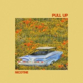 Nicotine - Pull Up