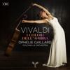 Ophélie Gaillard & Pulcinella Orchestra - Vivaldi: I colori dell'ombra  artwork