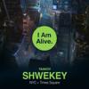 I Am Alive - Yaakov Shwekey