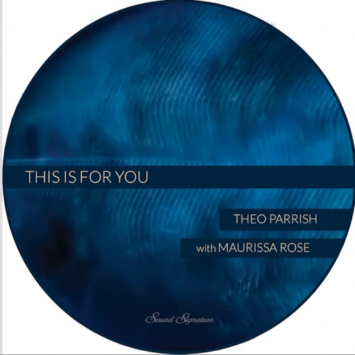 This Is For You - EP by Theo Parrish