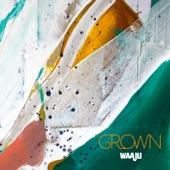 Waaju - Moleman