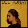 Ece Ronay - Karpuz artwork