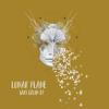 Lunar Plane - Sari Gelin - EP artwork