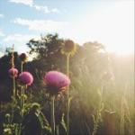 Even This Is Going to Pass (feat. Lori McKenna & Natalia Zukerman) - Single