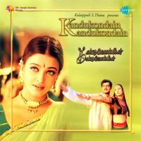 K.S. Chithra & Srinivas - Kannamoochchi artwork