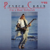 Pesach Chaim - Learn Chumash With Rashi