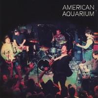 Live in Raleigh - American Aquarium