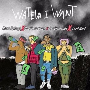 Wateva I Want (feat. Uno the Activist, Lord Narf & Lui Diamonds) - Single Mp3 Download