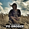 Edyta Strzycka - Po Drodze (Radio Edit) artwork
