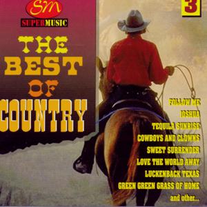 The Best Of Country Vol 3 - The Best Of Country Vol 3