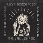 El Dusty, Chali 2na & Ozomatli - Nueva Generación (feat. Mr. Vallenato)