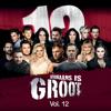 Afrikaans Is Groot, Vol. 12 - Various Artists