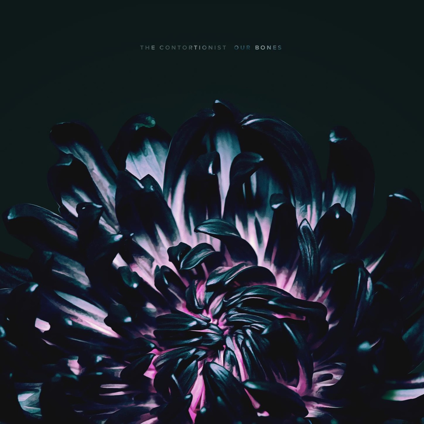 The Contortionist - Our Bones [EP] (2019)
