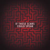 Citizen Soldier - If These Scars Could Speak artwork