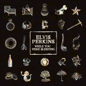 Elvis Perkins - While You Were Sleeping