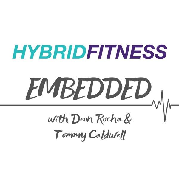 Hybrid Fitness Embedded