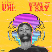 What If I Say - Fireboy DML - Fireboy DML
