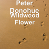 Peter Donohue (Piano) - Wildwood Flower  artwork