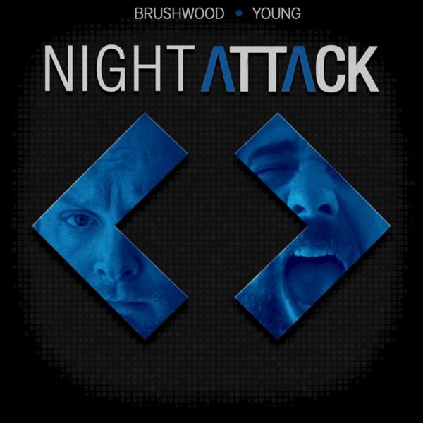 Night Attack Audio Feed