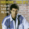 Haim Moshe - באו הצלילים artwork