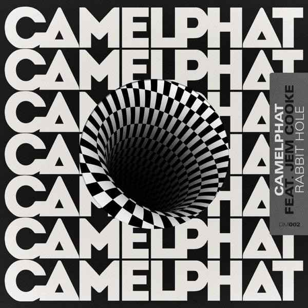 CamelPhat & Jem Cooke mit Rabbit Hole