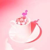 Pink Flamingo Rhythm Revue - On a Night Like This