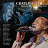 Chris Walker - Roof Garden (feat. Jerry Hey, Paul Jackson Jr & Mark Simmons) kunstwerk
