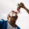 Vil Ba Vekk by Kamelen iTunes Track 1