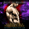 Felicity Heaton - Unchained by a Forbidden Love  artwork